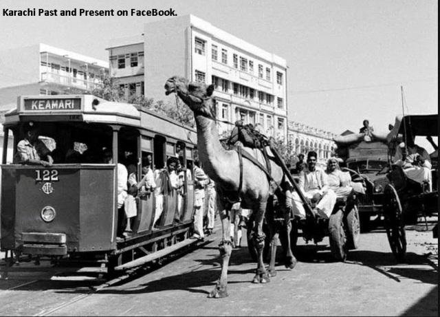 KarachiPastTramCamelCartTag