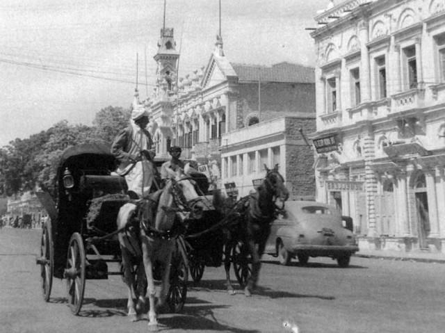 1950 - Elphinstone Street 2 (1)